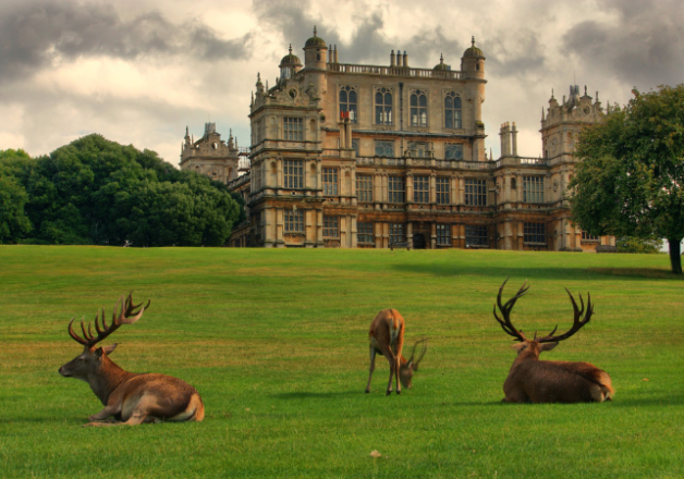 house for sale wollaton hall nottingham